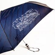 Зонт с проявляющимся рисунком во время дождя Санкт-Петербург